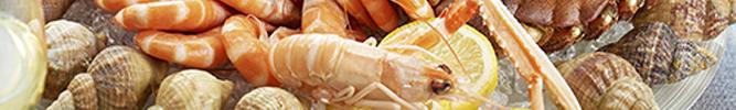 Les plateaux de fruits de mer