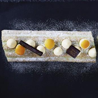Bûche abricot pistache - 8/10 parts