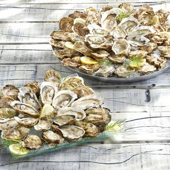 8 douzaines d'huîtres - Fines de claires n°3 - Marennes d'Oléron
