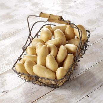 Pommes de terre blanches