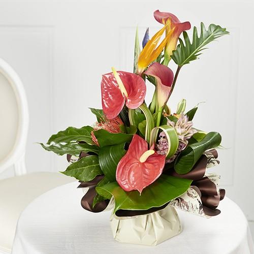 Bouquet bulle exotique fleurs arts de la table for Bouquet exotique