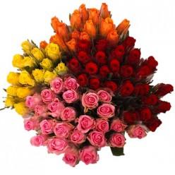 80 Roses coloris variés - emballées individuellement