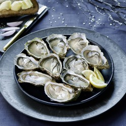 1 douzaine d'huîtres - Spéciales Saint Martin - n°3