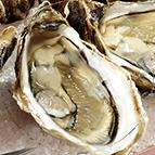 Huîtres Lamaison N°2